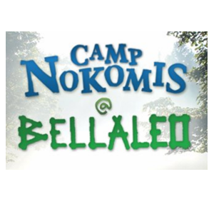 Camp_nokomis_AMT_Charity